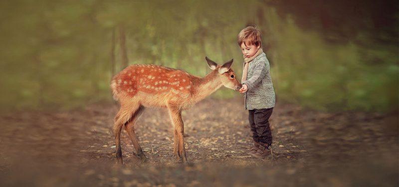 Máme rádi zvířata